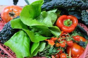 vegetables for vegans